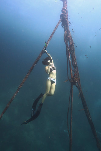 Discovery Freediving - GIFT CARD