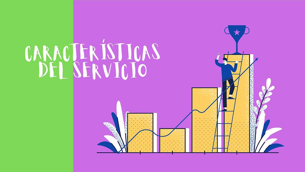 características del servicio.png