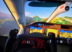 Motion Flight Sim