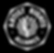 Screen Shot 2020-02-12 at 10.19.33 AM.pn