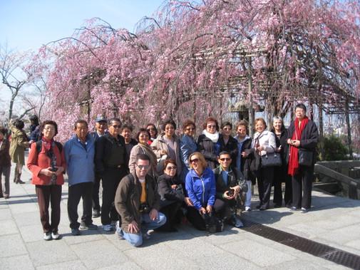 Grupo - Viagem ao Japão 2018