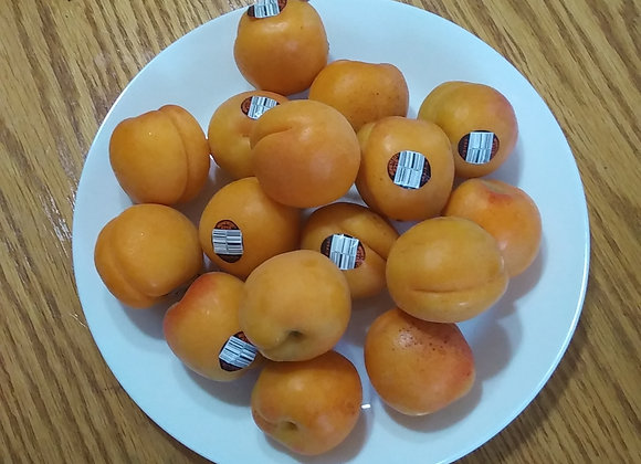 2lb Apricot 杏2磅