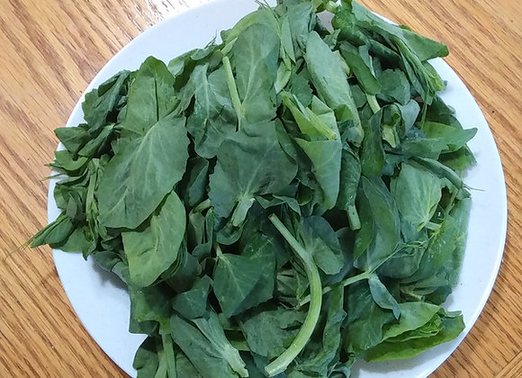 1lb Snow Pea Tips 豌豆尖 1磅