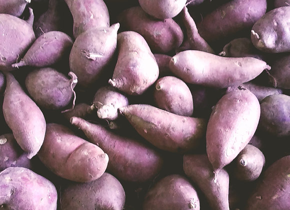 5lb Japanese Yams 日本小红薯 5磅