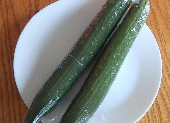 2 English Cucumbers 黄瓜2根