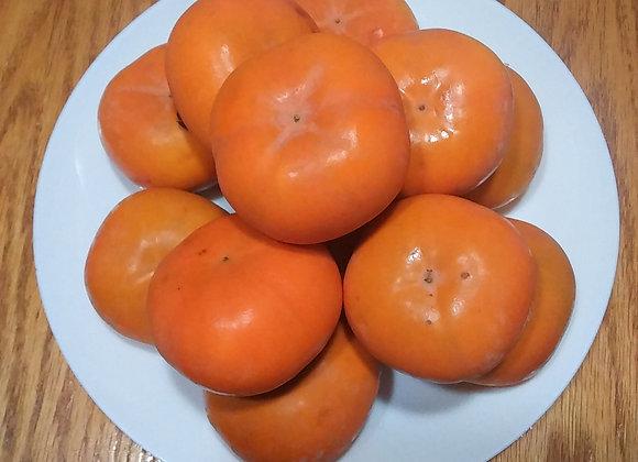 3lb Fuyu Persimmons 小柿子 3磅