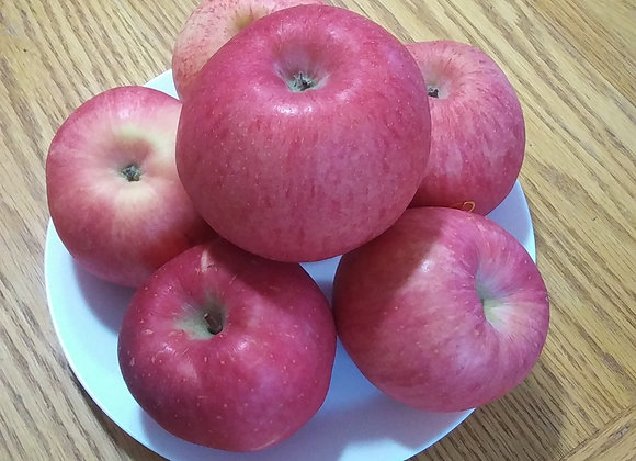 5lb Large Red Fuji Apples 大个红富士苹果5磅