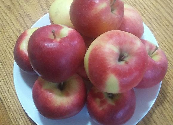 5lb Ambrosia Apples 神仙苹果 5磅