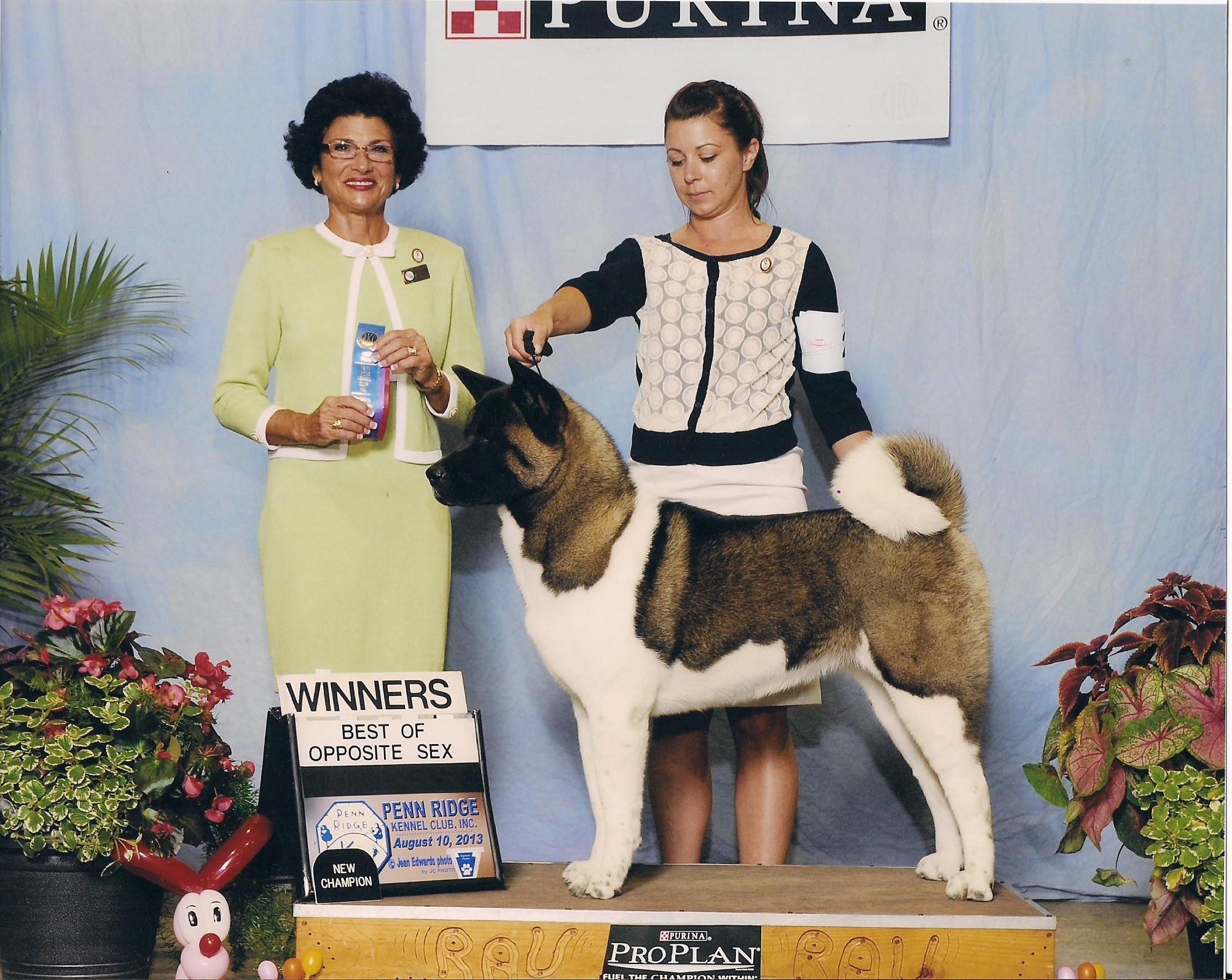 Saleena Harrisburg Champion win 001