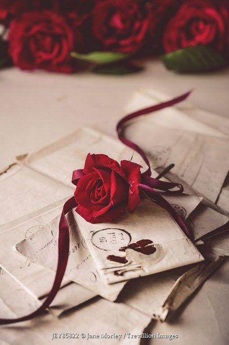 L'amour en petits mots_Marie Andrieu_Voyante_Nantes