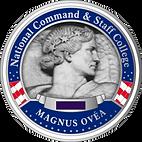 C-173549-IAPS-Magnus-OVEA-Pin-MC-AR.png