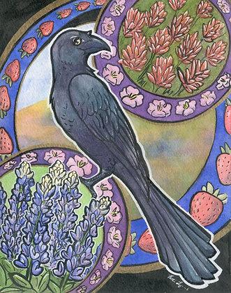 Springtime Grackle - 5x7 Art Print