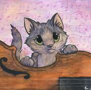 Viola Kitten