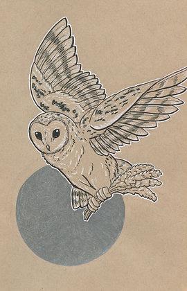 Barn Owl and Lavender 5x7 Art Print