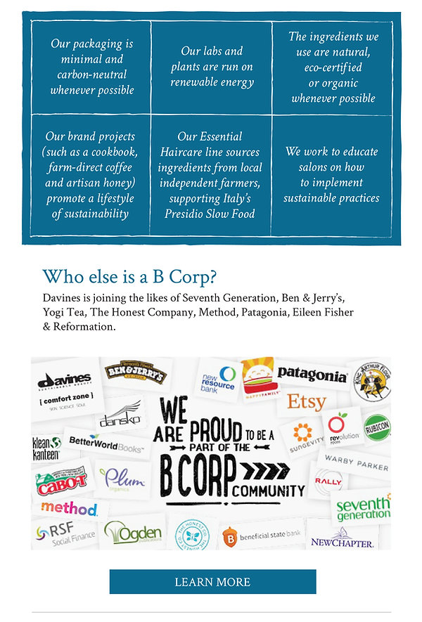 b Corp Davines, Patagonia, Etsy, Eileen Fisher, Method