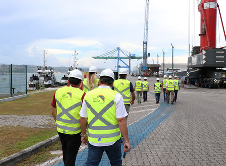 Suecos estudam importar madeira através do Porto de Imbituba