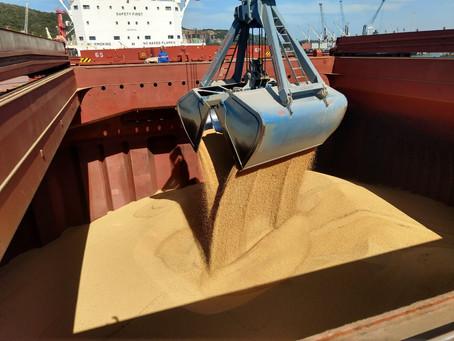 Com 6 navios confirmados, Porto de Imbituba se prepara para receber safra de soja