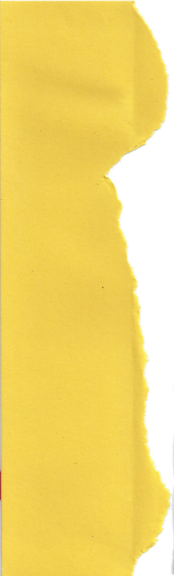 FP 2 yellow paper.png
