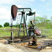 OIL DISCOVERY