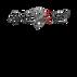 wwdfs logo - 2.png