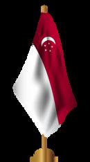 SG NATIONAL flag-02.png