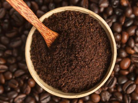 Borra do café: 9 usos incríveis