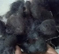 """close up of Indian """"floor hair"""""""