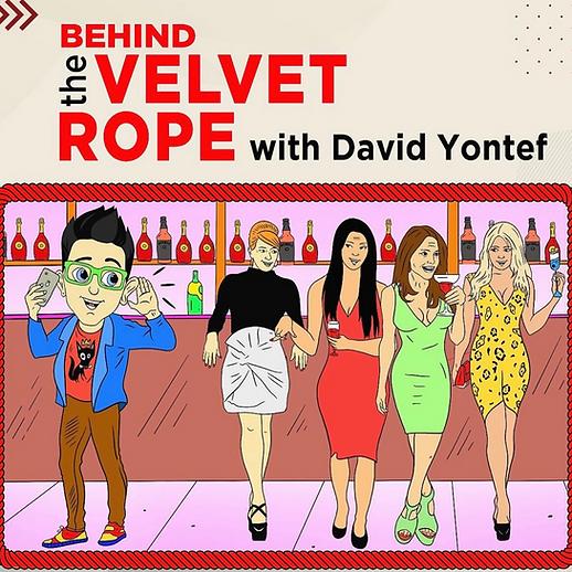 behind velvet rope png.png