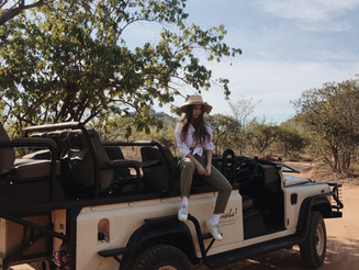 into the wild: an african safari