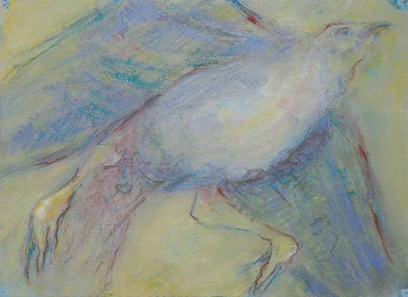 Blue Bird #4 Arriving