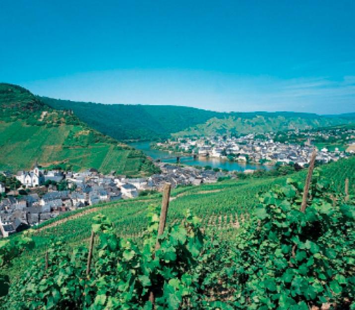אוהבים יינות גרמניים?