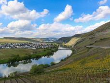 חשבתם פעם על טיול בעקבות יינות גרמניה?