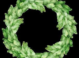 植物の花輪6
