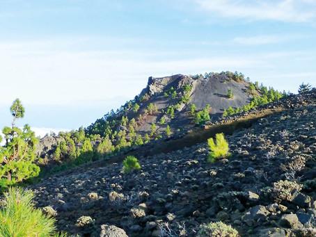Geologische Wanderung zum  Pico Nambroque
