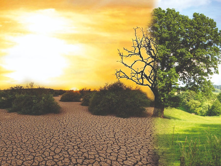 Klimakrise – der Weg in den Kollaps?
