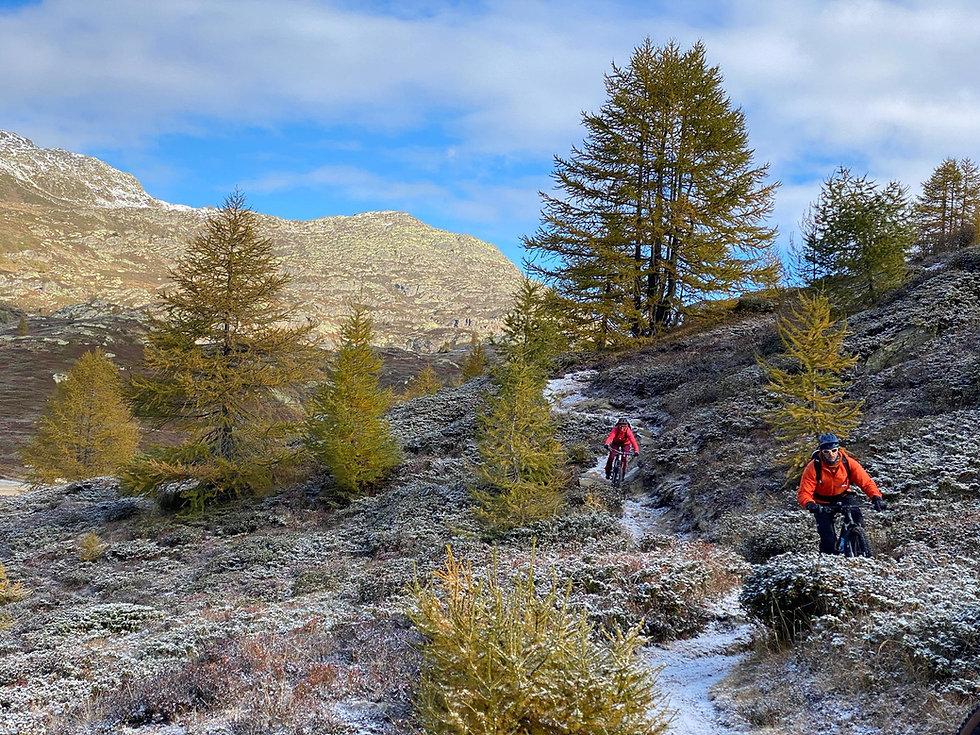 Descente VTT mountain bike Guide Valais