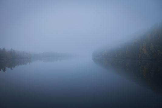 vatten_skog_01.jpg