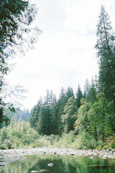 Lynn Valley 031.jpg