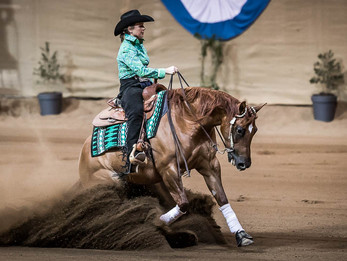 Reining Australia Award for Lil Miss Genius - Co Champion Non Pro Mare of the Year 2016