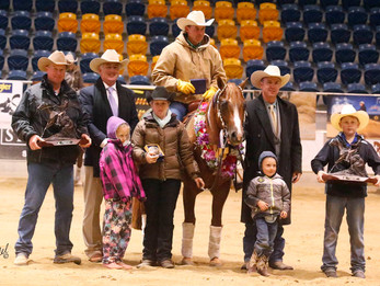 2015 QLD State Open & Open Derby Champion