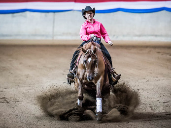 Reining Australia Award for Lil Miss Genius Co Champion Non Pro Mare of The Year 2017
