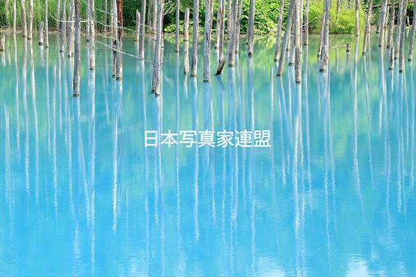 ①表紙の写真_青の復活_松本会員HP用.jpg