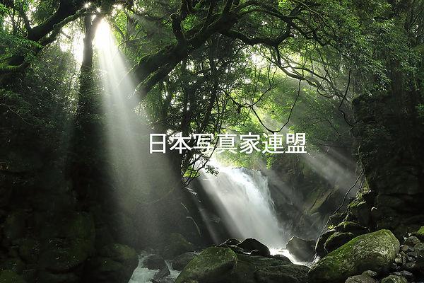 「光の旋律」 高橋 弘HP用.jpg