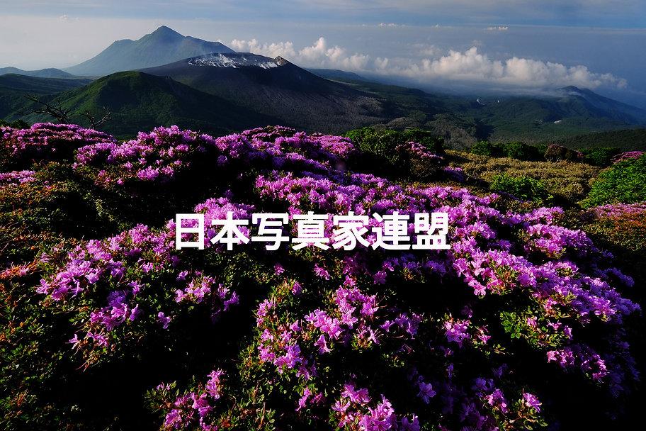 中小路会員・表紙の写真(HP用).jpg