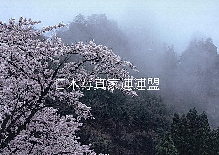 三木会員・表紙の写真HP用.jpg