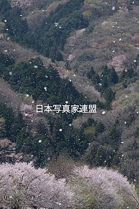 写真・下川床会員HP用.jpg
