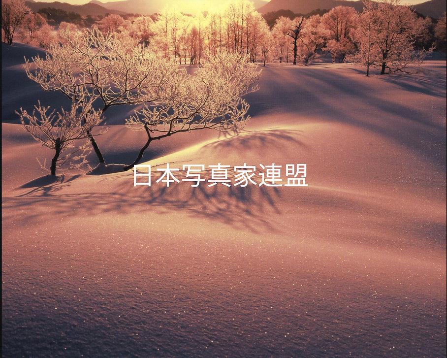 川名会員写真会報用.jpg