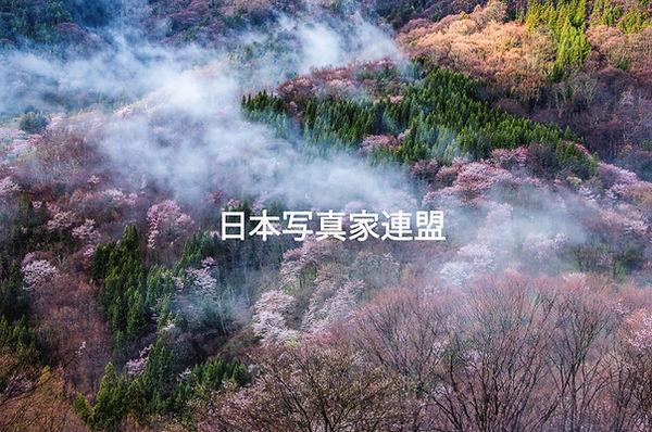 表紙の写真・長田善秀会員H用.jpg