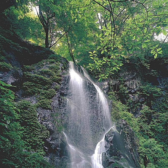 200009野瀬哲郎 緑の滝.JPG