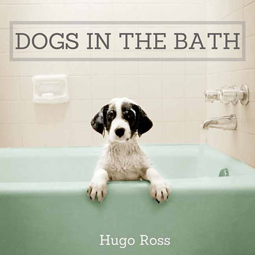 Dogs in the Bath : The Ultimate Collection